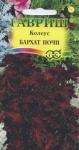 Семена - КОЛЕУС БАРХАТ НОЧИ, 5 шт.